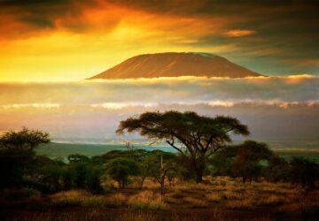 seguro viagem africa