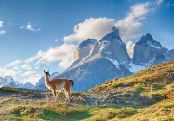 seguro viagem chile e argentina