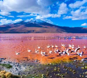 seguro viagem bolivia
